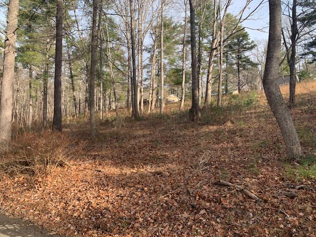 White Oak Gap Rd, Asheville NC 28803
