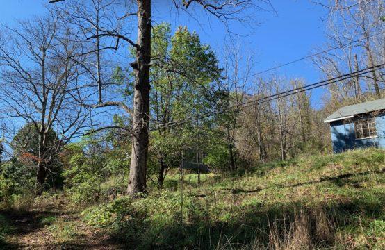 19 Robert Clayton Drive, Asheville NC 28805